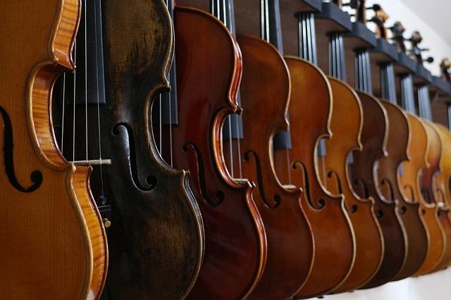 バイオリンが並んだ写真